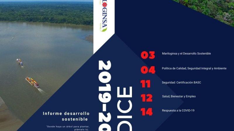 Informe Desarrollo Sostenible 2020